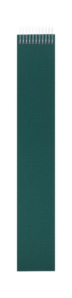 Блокнот Nettuno Mini в линейку, зеленый фото