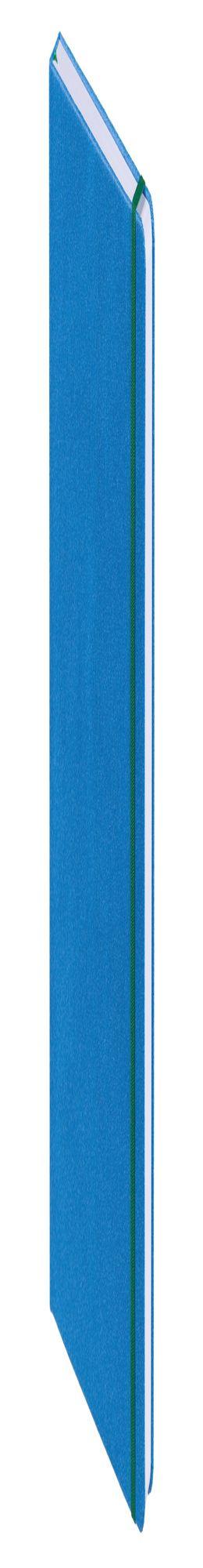 Ежедневник Reggae, недатированный, голубой фото