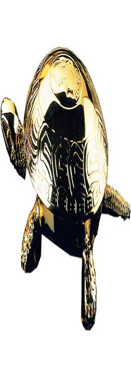 Звонок «Черепаха» фото