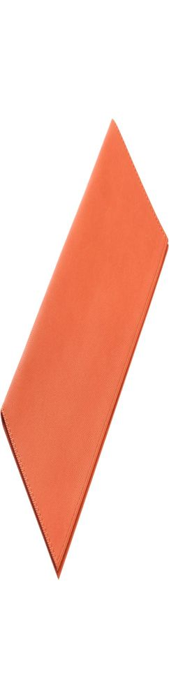 Органайзер для авиабилетов Twill, оранжевый фото