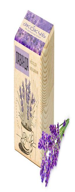 Набор для выращивания «Экокуб», лаванда фото