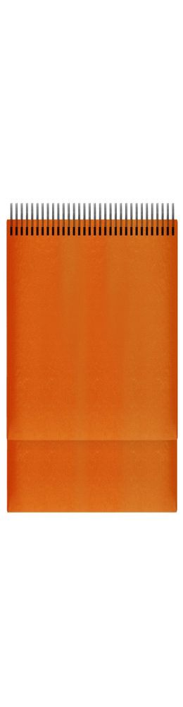 Планинг датированный Manchester 298х140 мм, апельсин 2019 фото