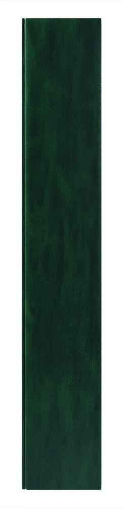 Ежедневник Vegas 5463 145x205 мм зеленый , белый блок, черно-синяя графика, 2019 фото