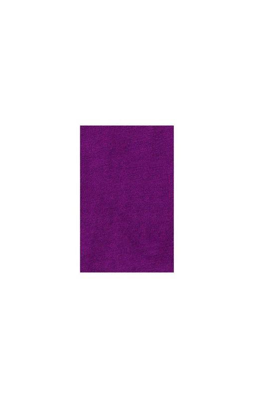 "Футболка ""Nanaimo"" мужская, темно-фиолетовый фото"