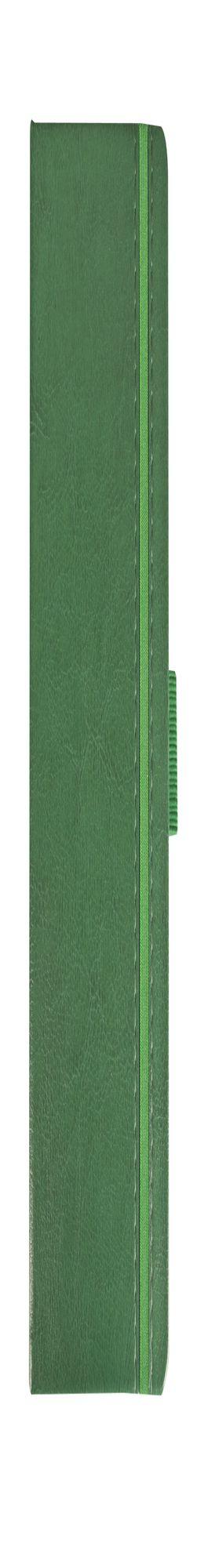 Ежедневник Lyric Mini, недатированный, зеленый фото
