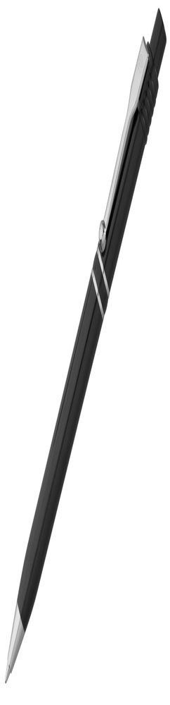 Ручка шариковая Raja Chrome, черная фото