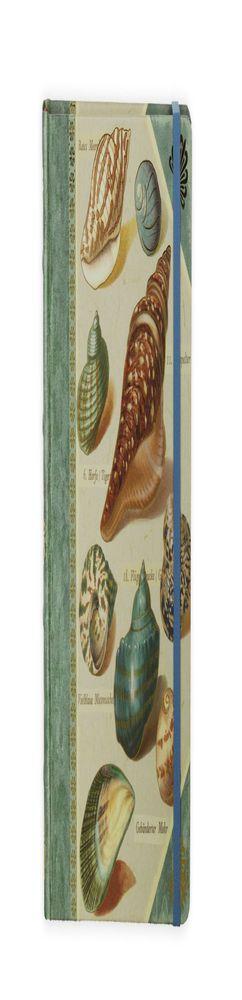 Книга для записей Shells фото