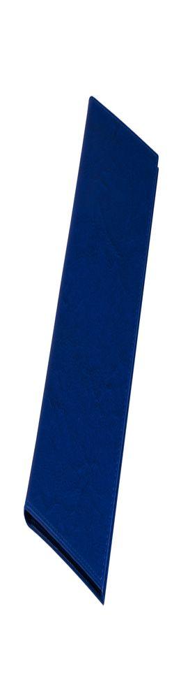 Тревеллер Birmingham, синий фото