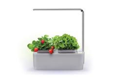 Компактный смарт-сад с подсветкой iGarden LED, белый / серый фото