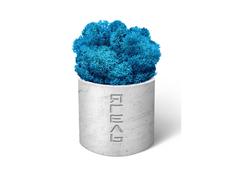 Мох декоративный «Ягель натуральный», синий фото