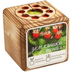 Набор для выращивания с органайзером «Экокуб Burn», земляника, коричневый фото
