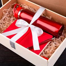 Набор подарочный Sunshine: бутылка для воды, бизнес-блокнот, ручка, коробка со стружкой, красный фото
