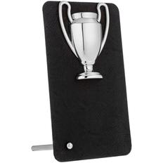 Награда Triumph Silver, серый фото