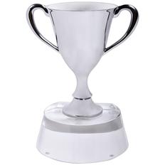 Стела Кубок победителя в подарочной упаковке, серый фото