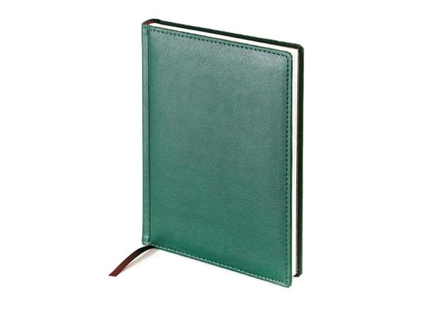Ежедневник недатированный Leader А5, зеленый - фото № 1