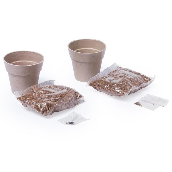 Набор NERTEL: два горшочка для выращивания петрушки и мяты с семенами, биоразлагаемый материал, грун - фото № 1