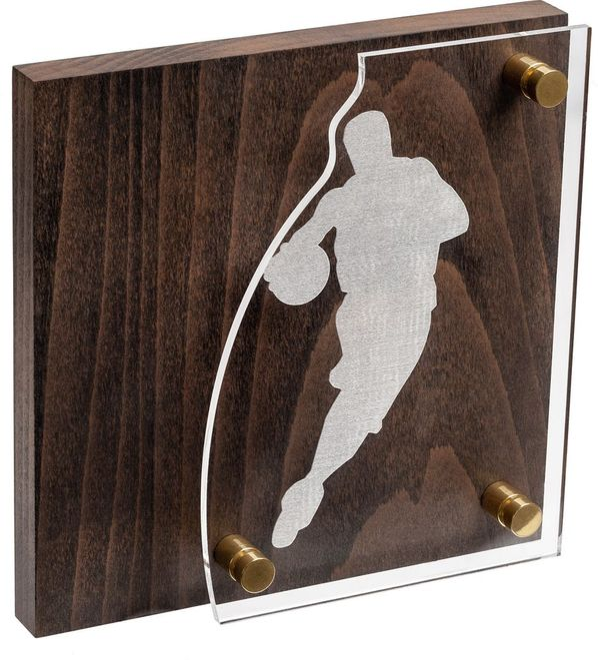 Награда Celebration, баскетбол, коричневый/серебристый - фото № 1
