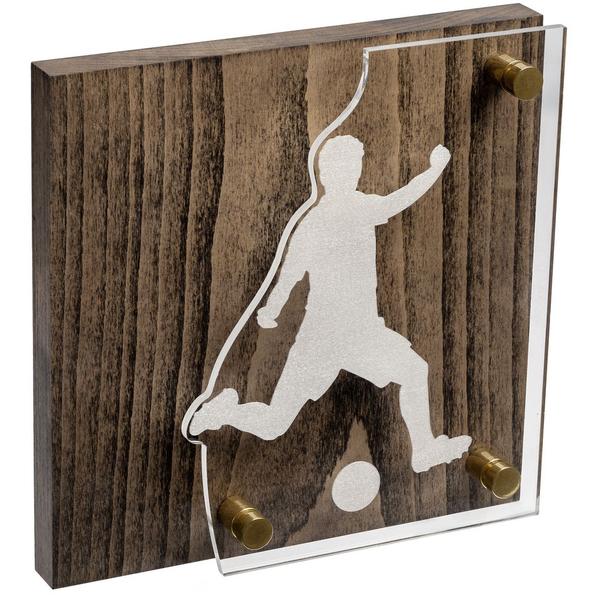 Награда Celebration, футбол, коричневый/серебристый - фото № 1
