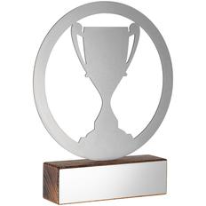 Награда в виде кубка Acme, серебристая/коричневая фото