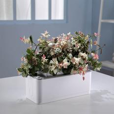 Умный сад с электронным контролем уровня воды, белый фото