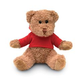 Медведь в футболке фото