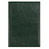 Ежедневник недатированный Birmingham 145х205 мм, зеленый, до 2021 фото