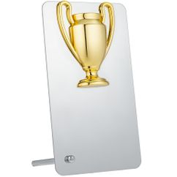 Награда Bowl Gold фото