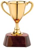 Награда Кубок фото