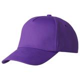 Бейсболка Bizbolka Convention 5 клиньев, фиолетовая фото