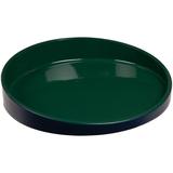 Блюдо Form Fluid, среднее, зеленое фото