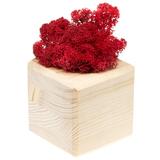 Декоративная композиция GreenBox Wooden Cube, красный фото