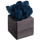Декоративная композиция GreenBox Black Cube, синий фото