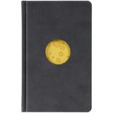 Ежедневник «Мышки на Луне», датированный, серый фото