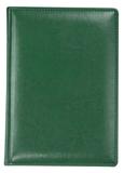 Ежедневник NEBRASKA, недатированный, зеленый фото