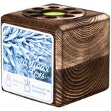 Набор для выращивания с органайзером «Экокуб Burn», ель голубая, коричневый фото