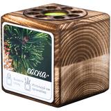 Набор для выращивания с органайзером «Экокуб Burn», сосна, коричневый фото