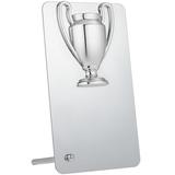 Награда Bowl Silver, серый фото