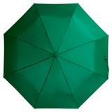 Складной зонт Unit Basic, зеленый фото