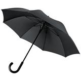 Зонт трость полуавтомат Alessio, черный фото