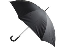 Зонт-трость Алтуна, чёрный фото