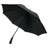 Зонт трость полуавтомат Ricardo, черный фото
