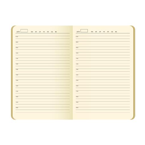 Ежедневник недатированный Portobello Trend, Alpha, черный/оливковый фото