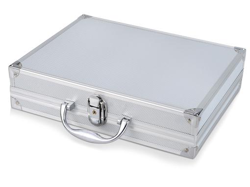 Подарочный набор Багс: офисный набор для гольфа, книга, кейс серебристый фото