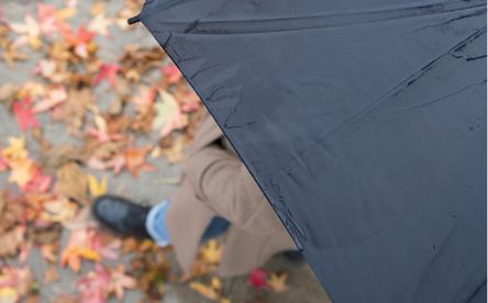 Зонт в подарок? Отличная идея!